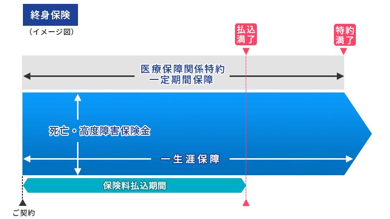 終身保険(イメージ図)